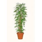 Bamboeplant / kunstplant ca 200 cm